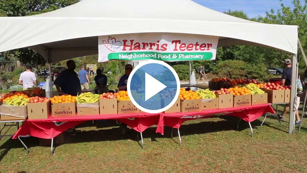 Harris Teeter - 2020 Cooper River Bridge Run Sponsor style