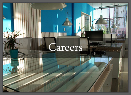 Careers in the Charleston Area