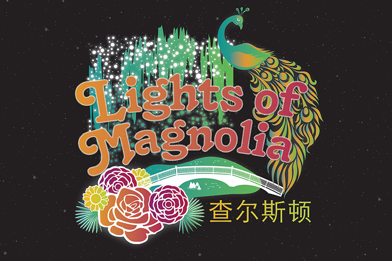 Lights of Magnolia